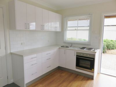 FULLY RENOVATED ONE BEDROOM UNIT