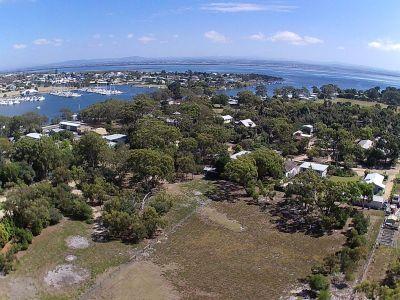 RARE ON RAYMOND ISLAND
