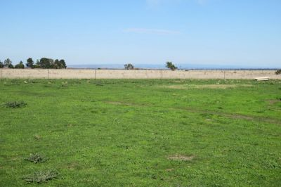 Vacant Land - A Great Opportunity Awaits - 180 acres - 73 ha (approx.)
