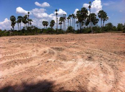 Khnat, Siem Reap | Land for sale in Puok Khnat img 0