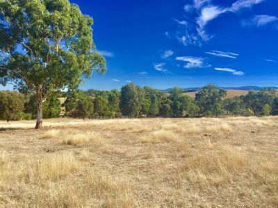 3.5 (approx) - BLISSFULL ACRES A STONE THROW FROM YEA TOWNSHIP