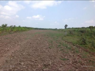 Chheu Teal | Land for sale in Banan Chheu Teal img 4