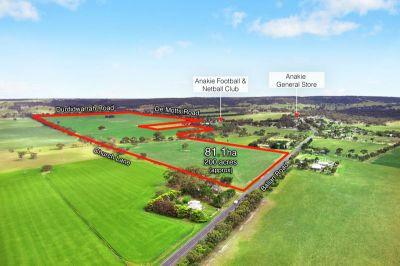 'Jollys' 81.1 ha - 200 acres (approx)