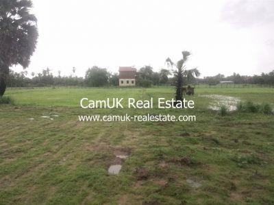 Puok, Siem Reap | Land for sale in Puok Puok img 16