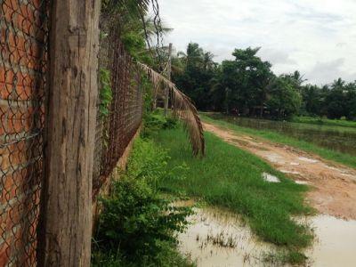 Sala Kamraeuk, Siem Reap | Land for sale in  Siem Reap Sala Kamraeuk img 3