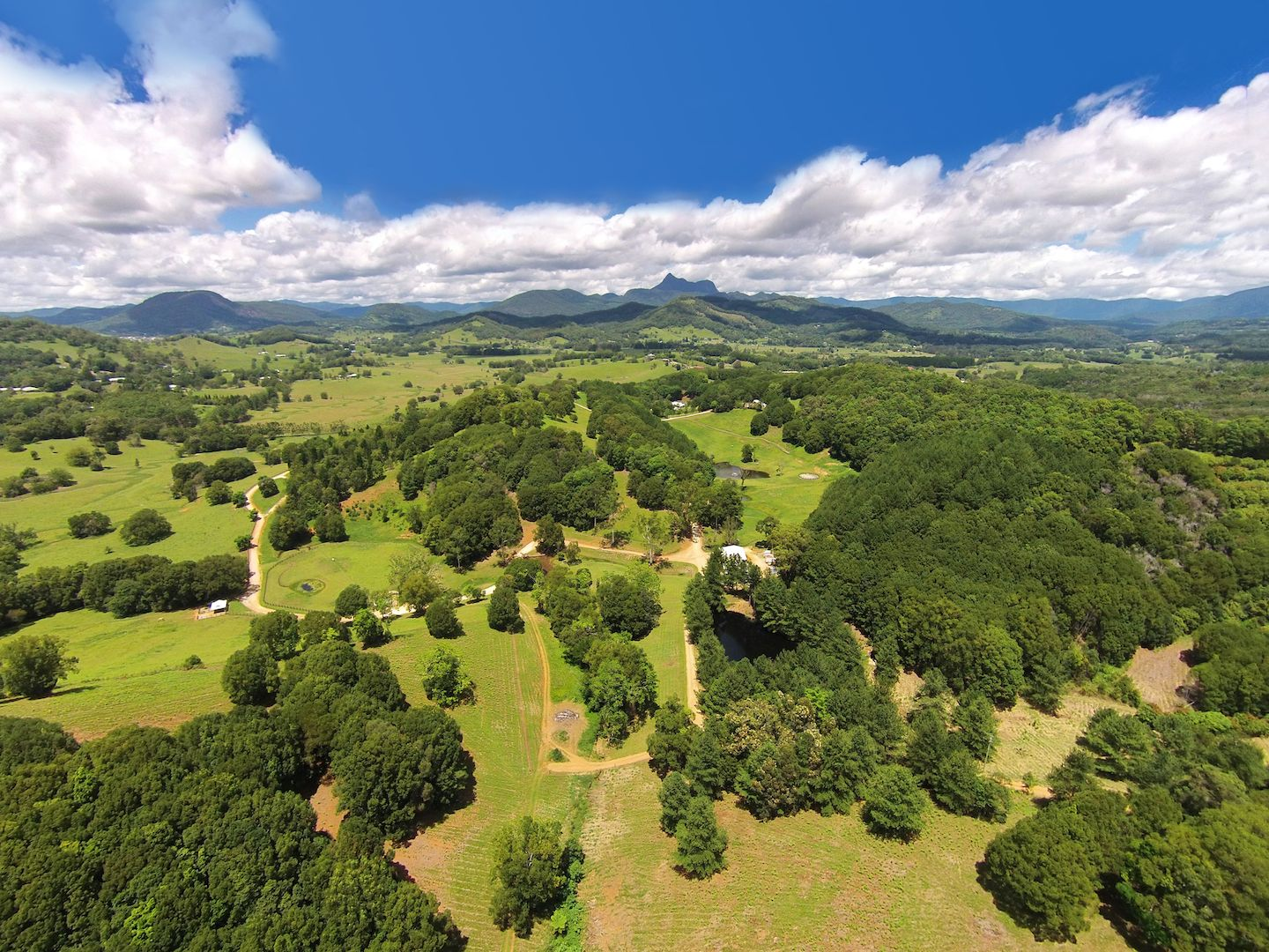 Ferme / Ranch / Plantation pour l Vente à Rosehill Estate - A hinterland paradise Nobbys Creek, New South Wales,2484 Australie