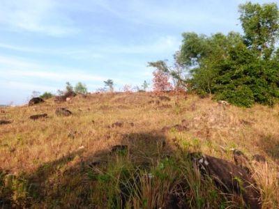Sangkat Buon, Sihanoukville | Land for sale in Sihanoukville Sangkat Buon img 13
