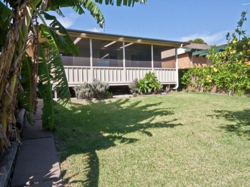 26 Lawson Avenue, Singleton