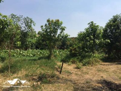 Kampong Svay, Kampong Thom | Land for sale in Kampong Svay Kampong Svay img 3
