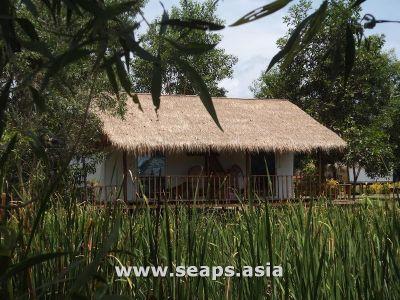 Chamkar Luong, Sihanoukville |  for rent in Kampong Seila Chamkar Luong img 0