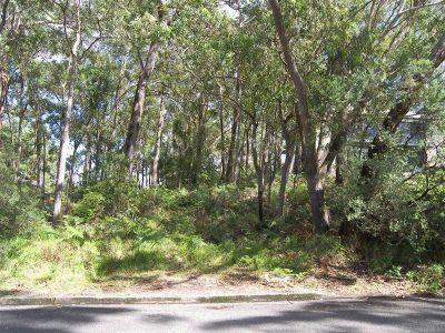 5 James Scott Crescent, Lemon Tree Passage
