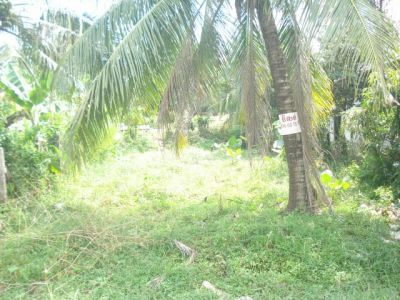 Sangkat Muoy | Land for sale in Sihanoukville Sangkat Muoy img 5