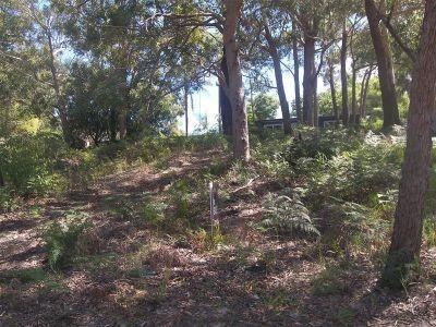 13 James Scott Crescent, Lemon Tree Passage