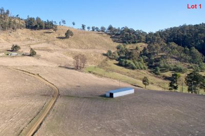 Lot 1, 2 and 4 Moss Beds Road, Lachlan