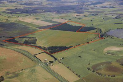 Ballarat - Burrumbeet District - 216.1 ha 533 acres (approx.)