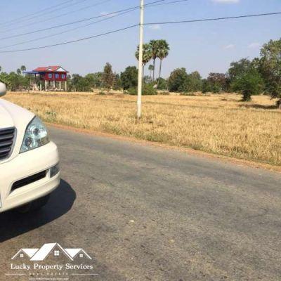 Pneay, Kampong Speu | Land for sale in Samraong Tong Pneay img 3