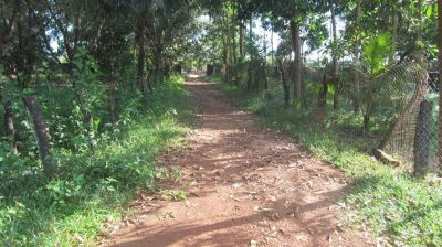 Sangkat Buon, Sihanoukville | Land for sale in Sihanoukville Sangkat Buon img 13
