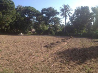 Siem Reab, Siem Reap | Land for sale in  Siem Reap Siem Reab img 1
