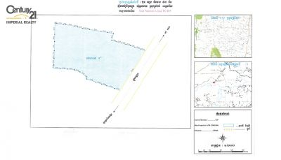 Ou Saray, Takeo | Land for sale in Tram Kak Ou Saray img 3