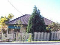 113 Lorna Street Waratah, Nsw