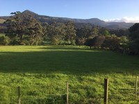North Facing 2 ½ Acre Pasture Lot