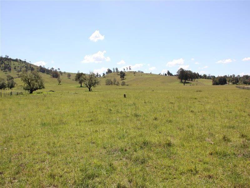 Lot 4 Goorangoola Road, Singleton