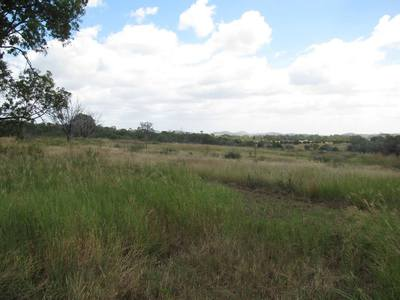 80 ACRES CLOSE TO MT LARCOM