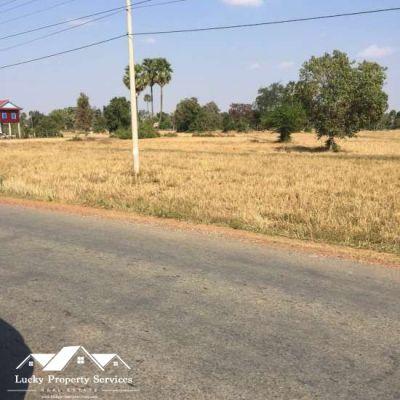 Pneay, Kampong Speu | Land for sale in Samraong Tong Pneay img 6