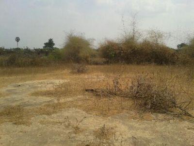 Trapeang Kong | Land for sale in Samraong Tong Trapeang Kong img 2