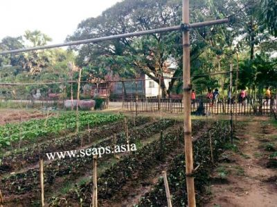 Boeung Reang, Phnom Penh | Land for sale in Daun Penh Boeung Reang img 10