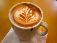 CAFE / TAKEAWAY - REDFERN