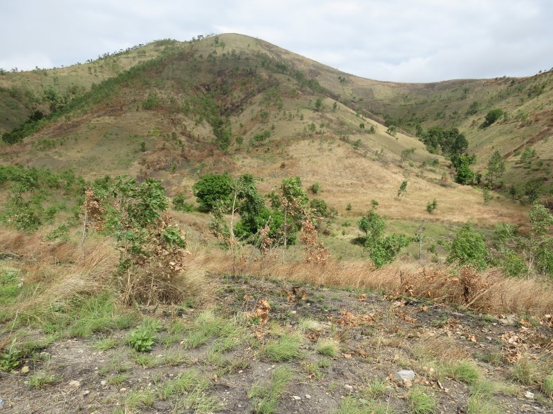 S6676 - Massive vacant land for sale - SGN