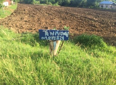 Sampov Lun, Battambang |  for sale in Sampov Lun Sampov Lun img 2