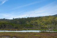 MERIMBULA LAKE FRONTAGE