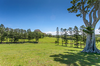 Premier Hinterland Acreage – Old Byron Bay Road