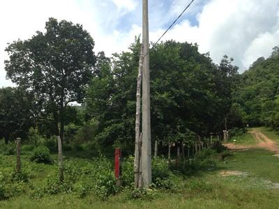 Prey Thum | Land for sale in Kampong Rou Prey Thum img 0