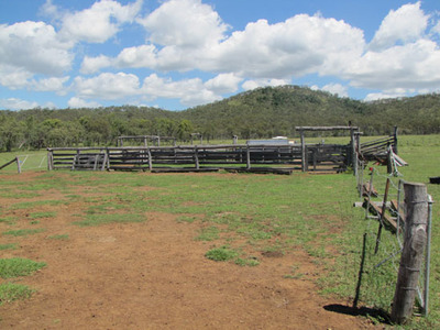 Mount Larcom Grazing Block