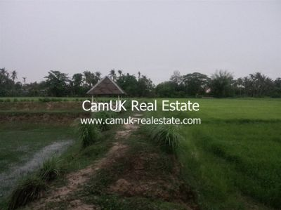 Puok, Siem Reap | Land for sale in Puok Puok img 22