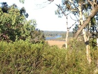 2.5 Acres - Possible River Views - No Covenant
