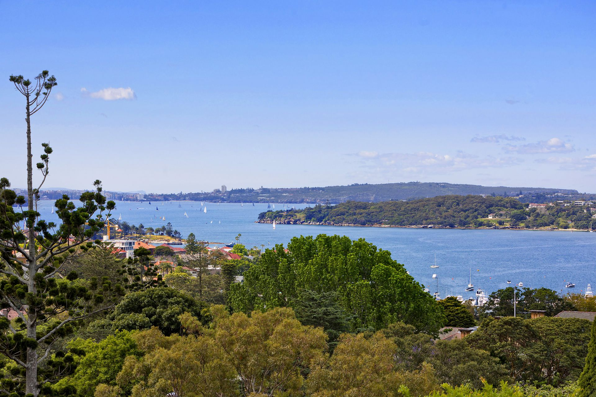 Additional photo for property listing at An enchanting sanctuary  Bellevue Hill, New South Wales,2023 오스트레일리아