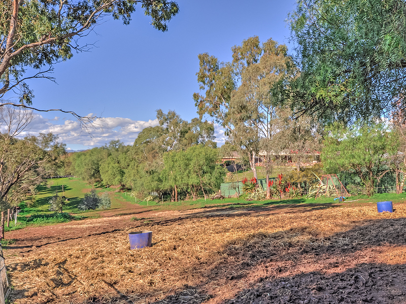 GAWLER EAST - A Hobby Farm IN Gawler!