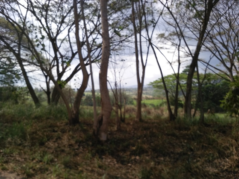 Farmland for sale in Port Moresby Moresby Central