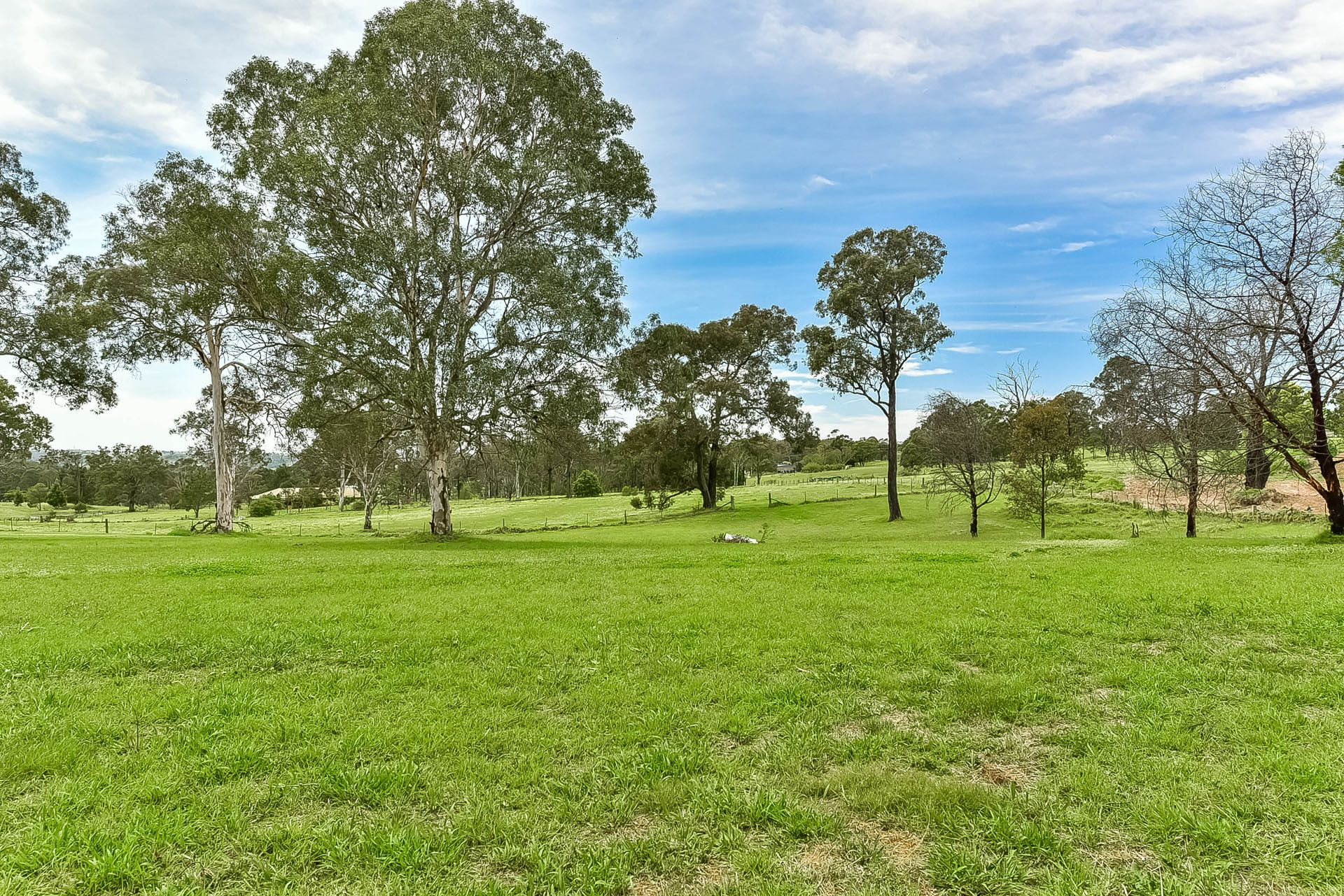 Lot 184, 40 Marion Street, Thirlmere