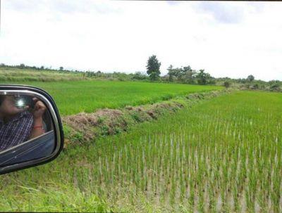 Krang Ampil | Land for sale in Samraong Tong Krang Ampil img 3
