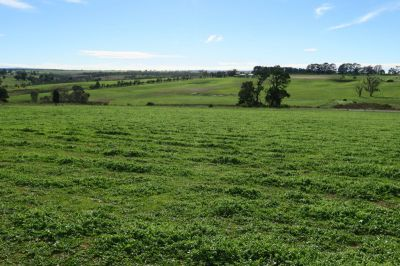 8.6Ha Country Home site