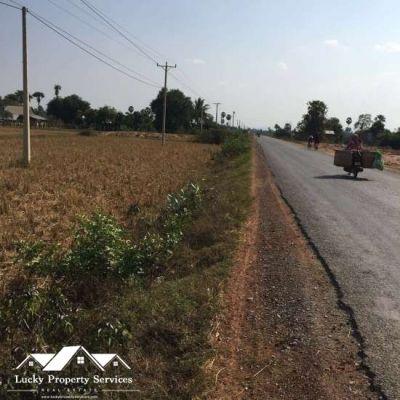 Pneay, Kampong Speu | Land for sale in Samraong Tong Pneay img 2