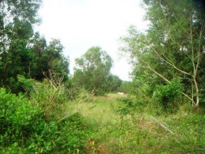 Sangkat Pir, Sihanoukville | Land for sale in Sihanoukville Sangkat Pir img 4