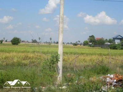 Peuk, Kandal | Warehouse for rent in Angk Snuol Peuk img 2