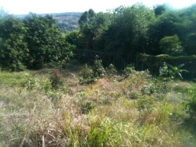 Sangkat Muoy | Land for sale in Sihanoukville Sangkat Muoy img 4