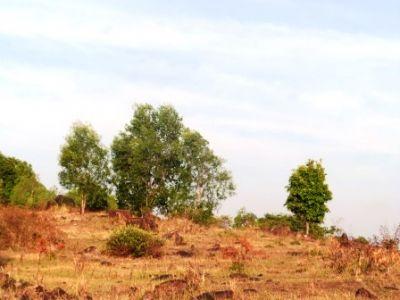 Sangkat Buon, Sihanoukville | Land for sale in Sihanoukville Sangkat Buon img 21